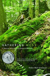 The Magic of Moss and What It Teaches Us About the Art of Attentiveness to Life at All Scales